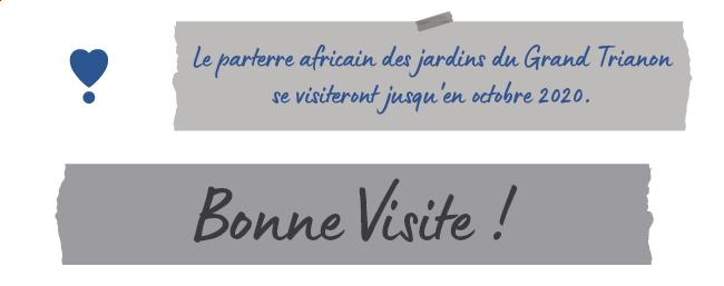 Le parterre africain des jardins du Grand Trianon se visiteront jusqu'en octobre 2020. Bonne visite !